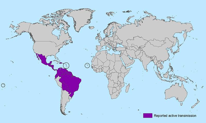 Mosquito-Zika-Virus Spread